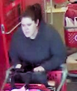 Sheriff's Office Seeking the Public's Assistance in Locating Suspect in Theft at Target
