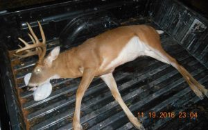 Two Men Sentenced Under Maryland's New Anti-Poaching Law