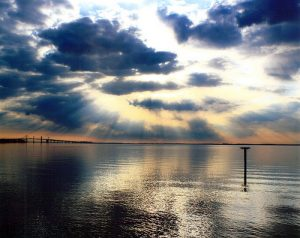 Chesapeake Bay Report Card Shows Steady Health Recovery