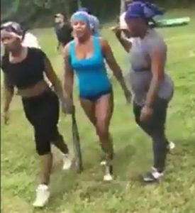 UPDATE: Two Individuals Charged in Nicolet Park Fight Video
