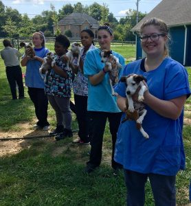 Wednesdays Pet: Help our Local Pet Rescues as they Help Victims of Hurricane Harvey