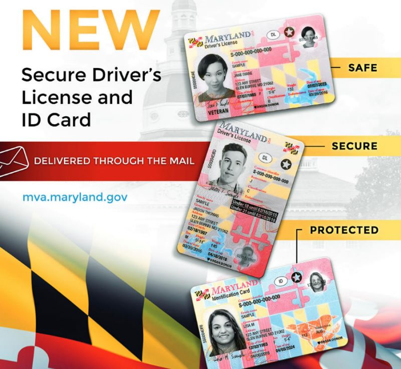 renew drivers license annapolis md