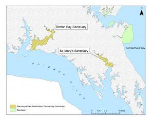 Maryland Announces Comprehensive Oyster Restoration Plan