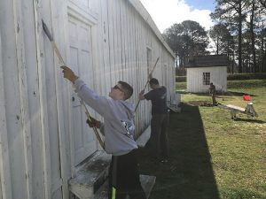 Volunteers to Help Maintain and Preserve Point Lookout State Park