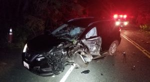Driver Injured in Motor Vehicle Accident on Hermanville Road