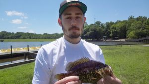 St. Mary's County Man Catches Record Warmouth at Gilbert Run Lake