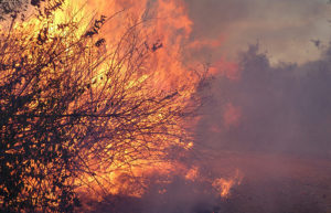 Fall Brings Heightened Risk of Wildfire