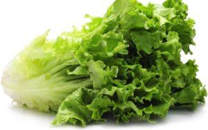 CDC Urges Public Not to Eat Romaine Lettuce Amid E. Coli Concerns