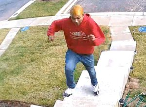 Police Request Public's Assistance in Identifying Package Thief in Lexington Park
