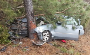 No Injuries After Vehicle Strikes Tree in Great Mills