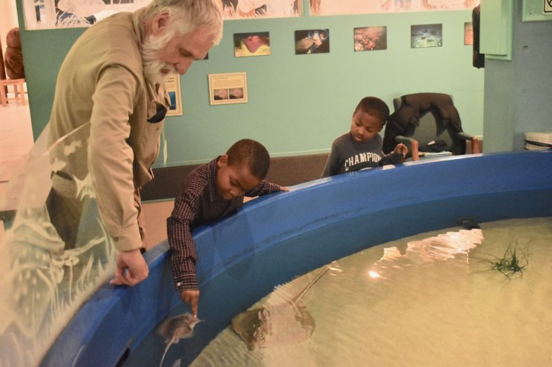 Calvert Marine Museum Hosts Special Needs Night