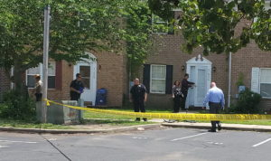 Police Respond to Another Report of Shots Fired on Ronald Drive in Lexington Park