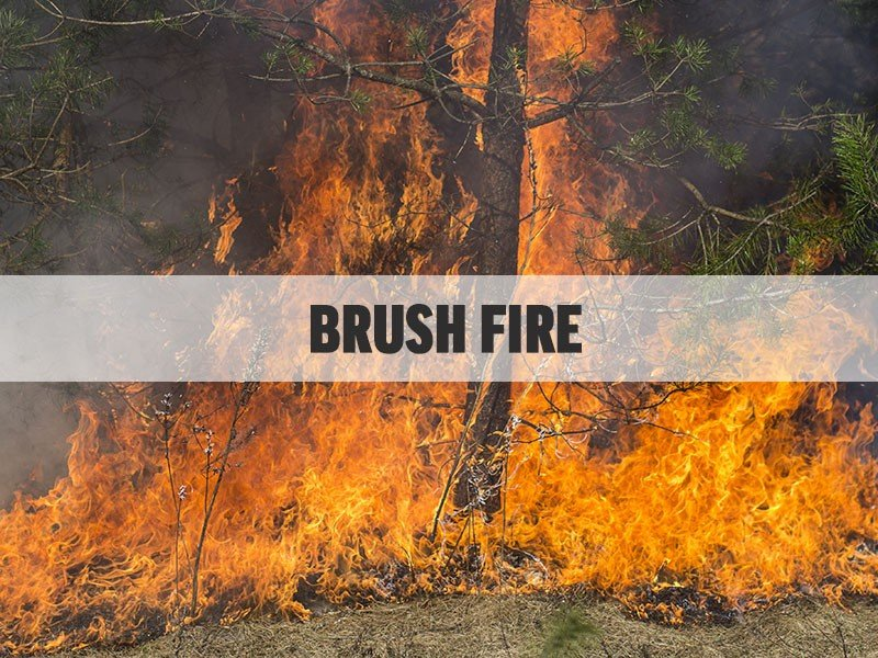 Firefighters in Charles County Respond to Large Brush Fire in White Plains