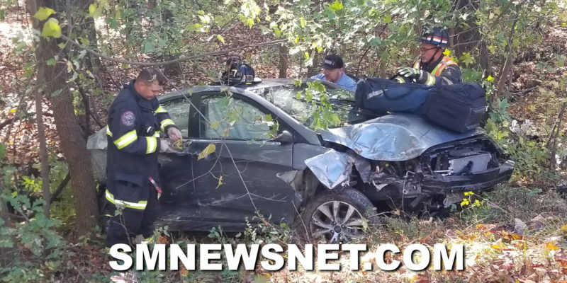 Single Vehicle Into a Tree in Hollywood Sends Operator to Area Trauma Center