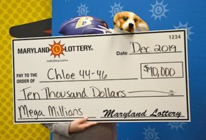 Charles County Couple's Dog Plays Role in $10,000 Mega Millions Win