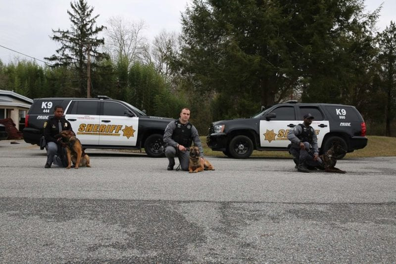Charles County Sheriff's Office Welcomes Two New K-9 Partners!