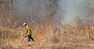 Calvert County to Conduct Controlled Burn of Meadows on Monday, March 8, 2021