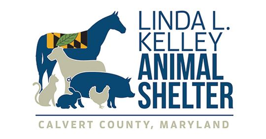 Linda L. Kelley Animal Shelter Waives Adoption Fees During the Clear the Shelter Event – August 23 to September 19!